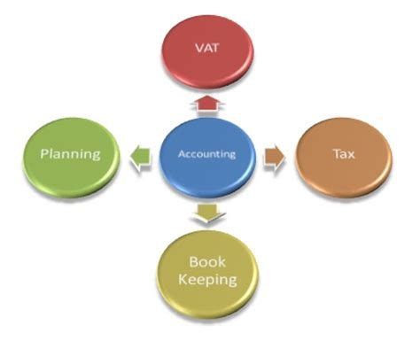 Essay on Forensic Acccounting Accounting Papers